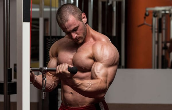 Статодинамика в бодибилдинге: упражнения