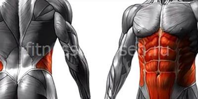 Мышцы кора упражнения