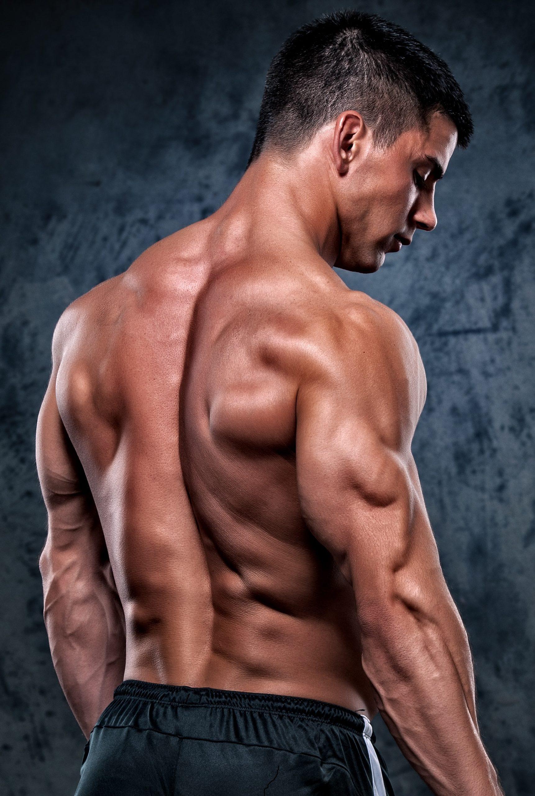 Базовые упражнения в тренажерном зале для мышц спины