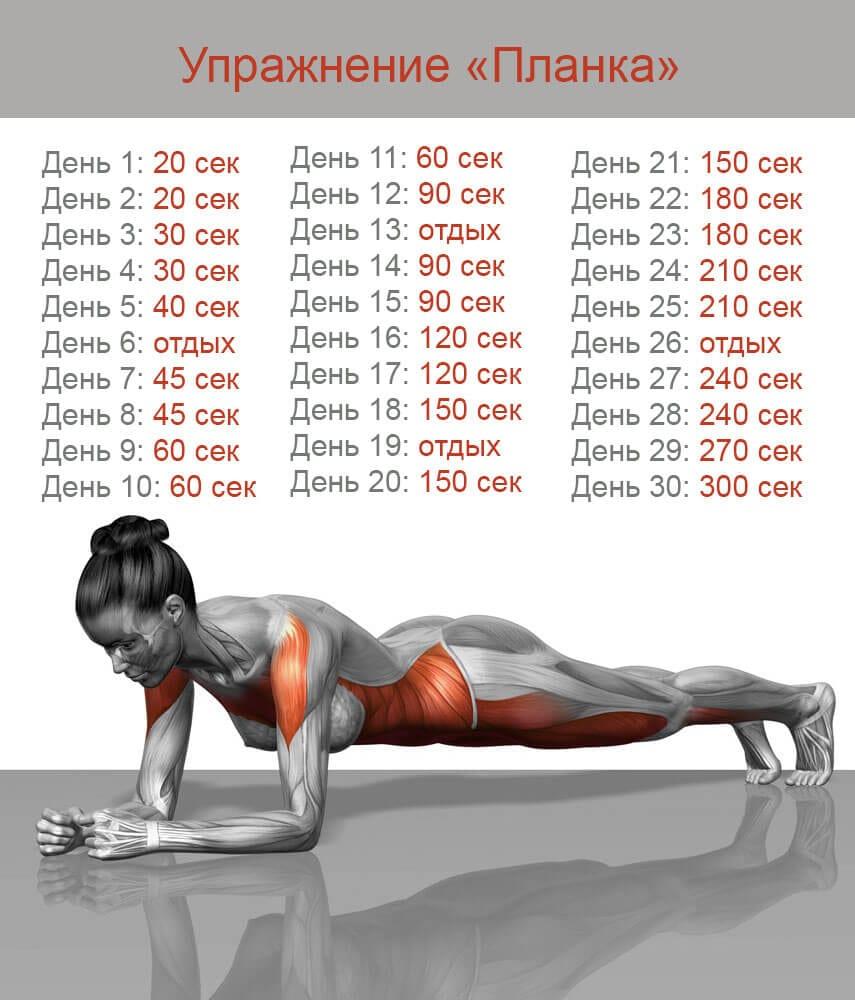 Планка программа тренировок на 30 дней