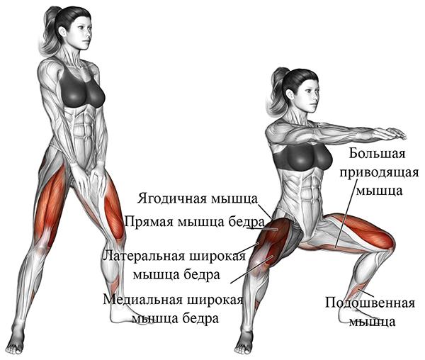 Приседания плие (сумо) - какие мышцы работают