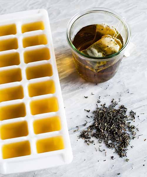 Приготовление кубиков льда из чая